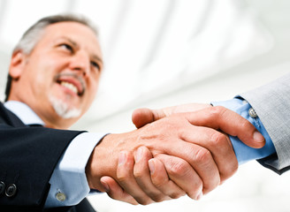Handsome mature businessman shaking hands