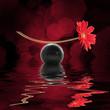 Equilibre zen, fond noir