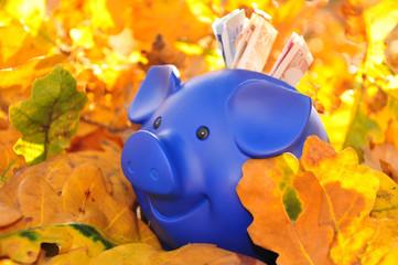 Sparschwein-jetzt sparen