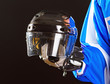 Picture of hockey helmet