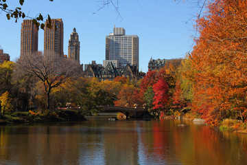 Autumn in the Central Park.