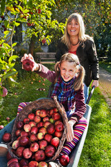 mother pushing daughter and apples in the barrow