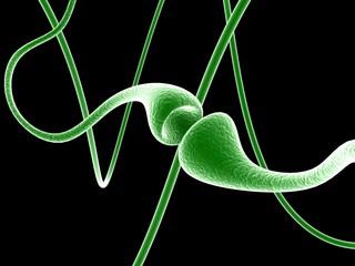 Digital illustration of Synapse in color background