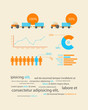 infographics as a business record development of the company
