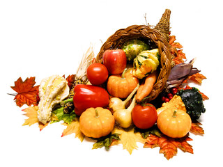 Harvest or Thanksgiving cornucopia