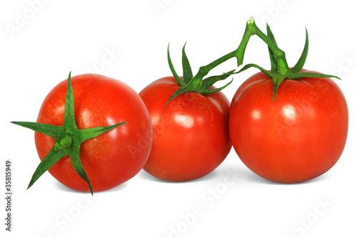 Gemüse 281