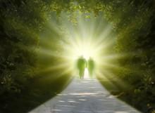 "Постер, картина, фотообои ""walk into light"""