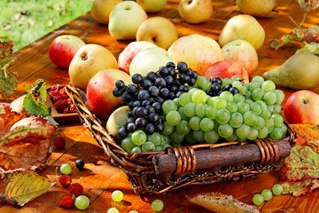 Basket of fruits.