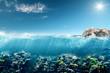 Fototapeten,korallenstrand,tauchen,schnorcheln,unterwasser