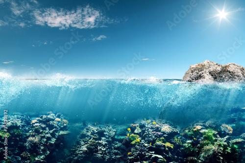 Leinwandbilder,korallenstrand,tauchen,schnorcheln,unterwasser