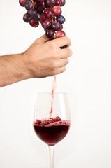 Spremitura di uva