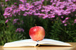 Apple with Book in Garden