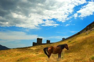 Sudak a fortress