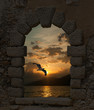 Sunset and seagull through the old castle