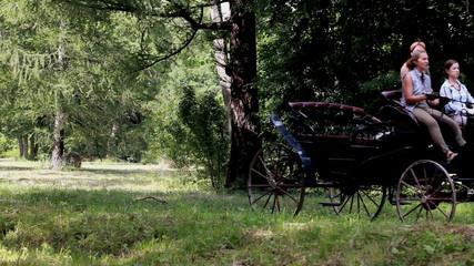 Coachman horse-drawn carriage.