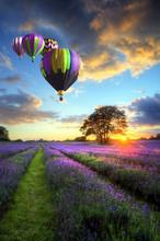 "Постер, картина, фотообои ""Hot air balloons flying over lavender landscape sunset"""