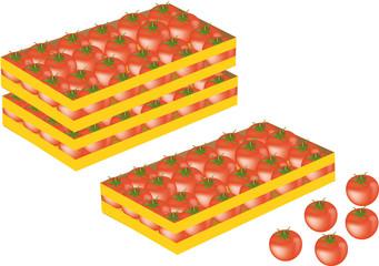 cassetta pomodori