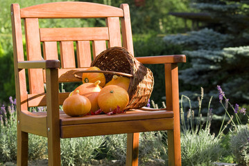 Pumpkins on chair