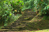 Old stone stairs in Ciudad Perdida (Lost City), Colombia