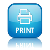 """PRINT"" Web Button (printer printout now laser documents online)"