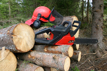 Logger equipment with cut trees