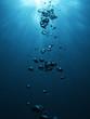 Leinwanddruck Bild - Bubbles undersea