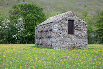 stone barn in wildflower meadow, Muker in Swaledale, North Yorks