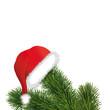 Weihnachtsmütze mit Tannenzweige