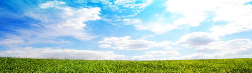 Wiese und Himmel