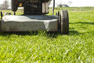 Push mower stopped in front of a small patch of grass