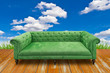 green sofa on wood floor