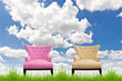 pink and cream sofa on green grass against blue sky