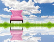 pink sofa on green grass and blue sky