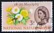 Postage stamp USA 1963 Buttercups, Daisies and Bee