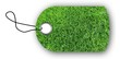 Anhänger grüner Rasen