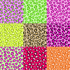 Collection Leopard Skin Textures