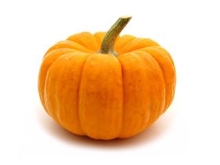 Single mini pumpkin