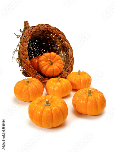 Harvest or Thanksgiving cornucopia of pumpkins