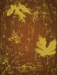 Grunge design of autumn