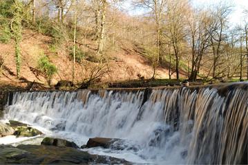 River Darwen at Houghton Bottoms, Lancashire