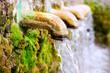 Leinwanddruck Bild - brass fountain water source spring