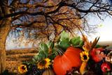 Thanksgiving bounty under autumn tree poster