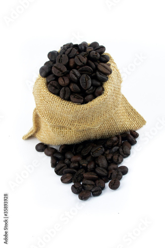 arabic coffee beans