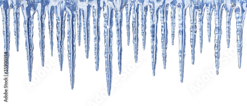 Blue icicles on white background - panorama