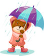 cute bear in rain with umbrella