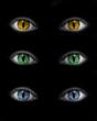 Yeux bleus jaunes verts catwoman - fond noir