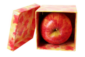 Apple in Gift Box