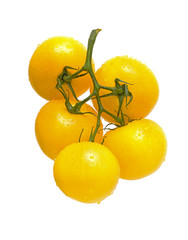 a bunch of tomato yellow on a white background