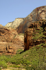 Zion National Park in Utah USA