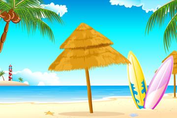 Surfing Board